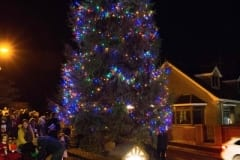 Annalong-Lights-Tree