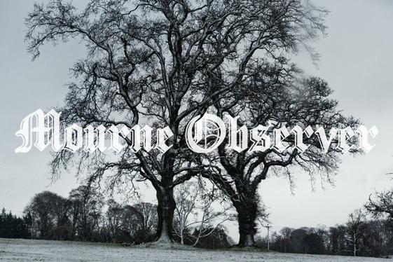 2f8a4b86-snow-trees