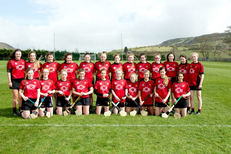 Down Minor camogs have chance to grab All Ireland Shield  glory