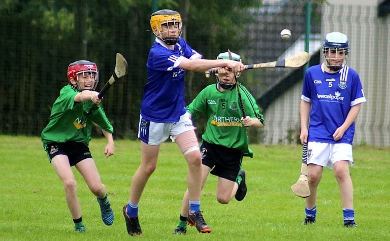 Final delight for jubilant young hurlers