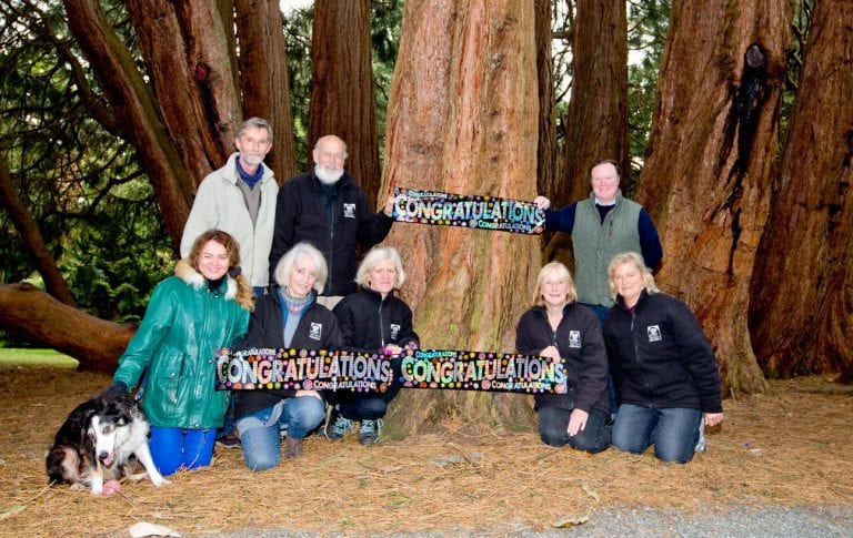 Magnificent Castlewellan redwood is country's top tree