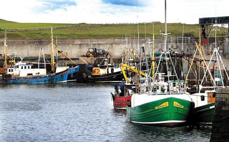 Report illustrates fall in fish catch in Ardglass