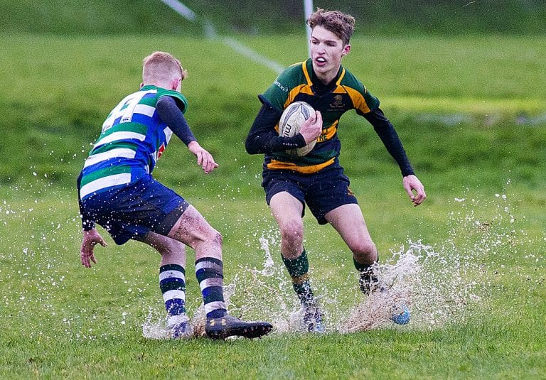Down High let big lead slip as they lose narrowly in Medallion Shield