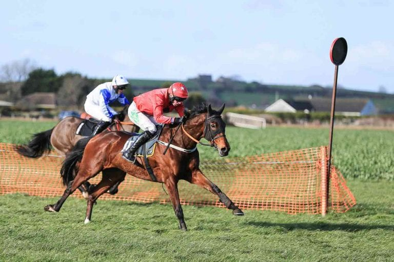 Downpatrick jockey rides a winner at the North Down Hunt Club meeting