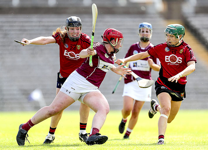 Down camogs so close to reaching All Ireland Intermediate final