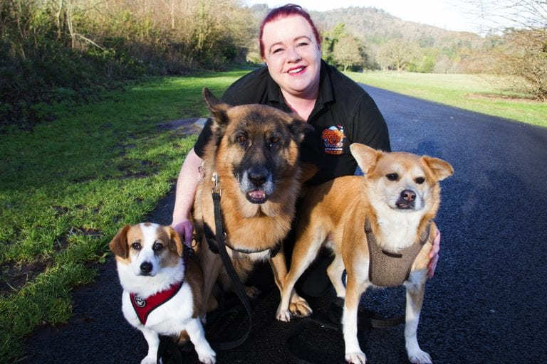 Charity dedicated to rescuing dogs hosting special celebration
