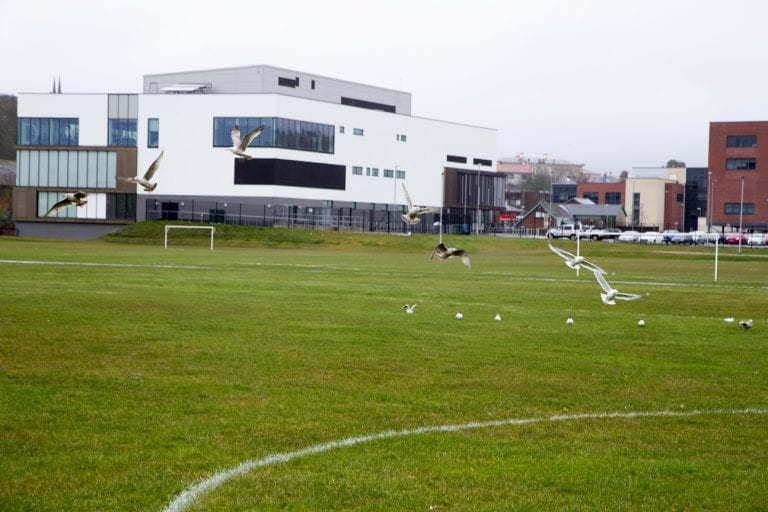 This is not the time to make plans, says Newcastle League secretary