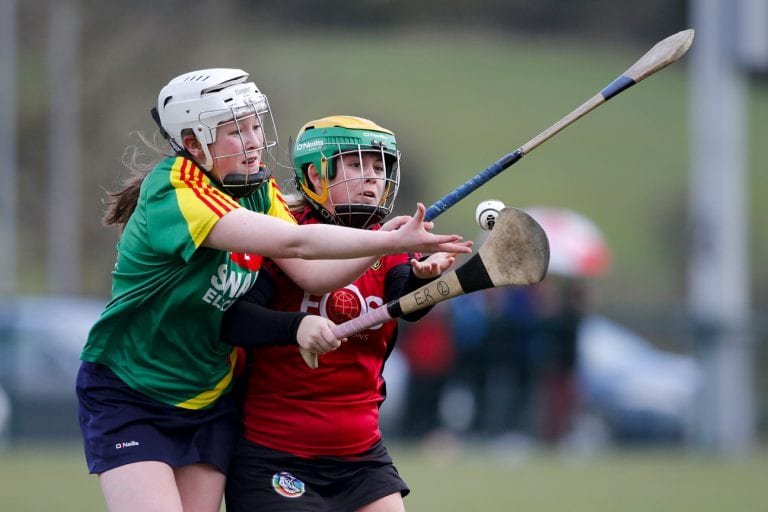 Down camogs lose to Carlow in Liatroim