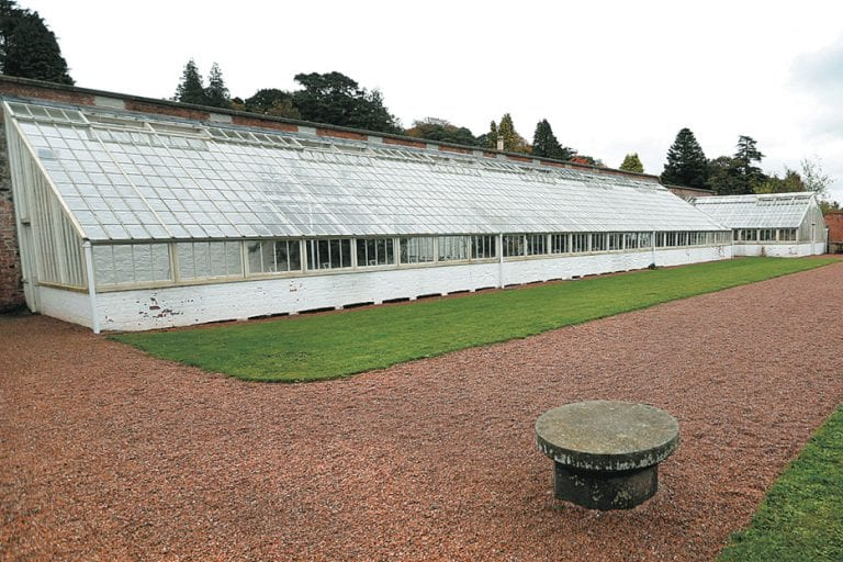 Arboretum improvement works given go-ahead