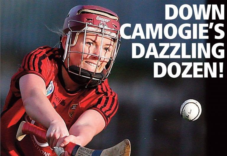 Camogie's delightful dozen Ulster All-Stars
