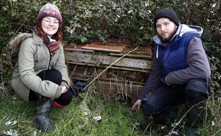 Creating habitats for local wildlife