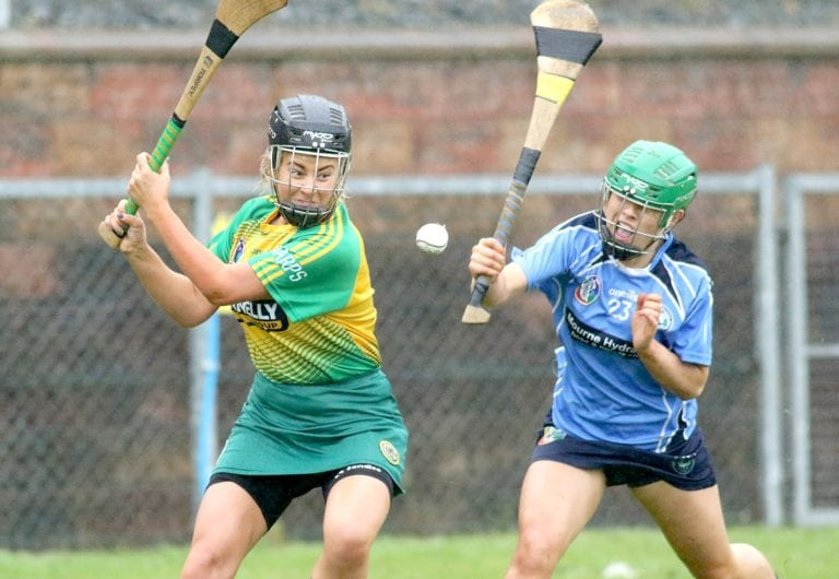 Down Camogie makes plans for upcoming season